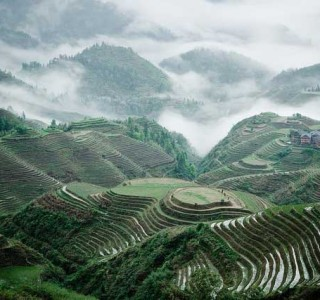 Longji-Terrace-Fields